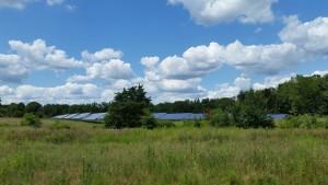 solar-panels-972181_960_720